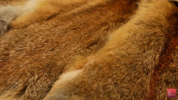 Theodora pale Toplot regular, 124 skins