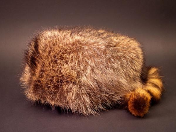 Trappermütze Waschbär